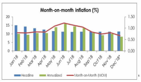 Annual Headline Inflation To Increase But Monthly Price Level Down - Experts - Brand Spur