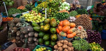 LASG set to tackle consumption of Unwholesome Fruits, Vegetables