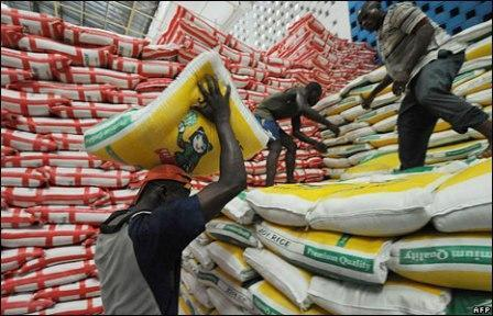 Rice Production To Hit Record High In 2023 - Brand Spur