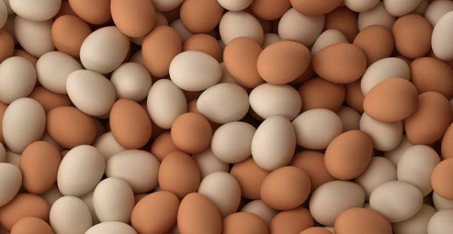 Lagos State Daily Egg Consumption Reaches 20 million