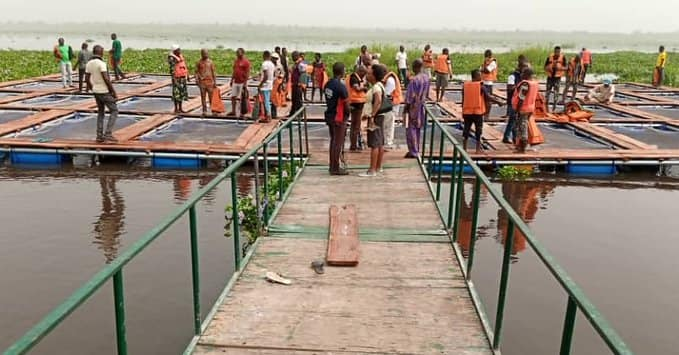FISH FARMING: Lagos Empowers 4O Youths With Cage Culture System