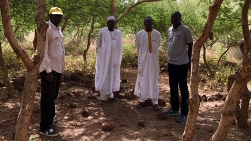 In Niger, a 'crazy idea' to restore degraded land pays off