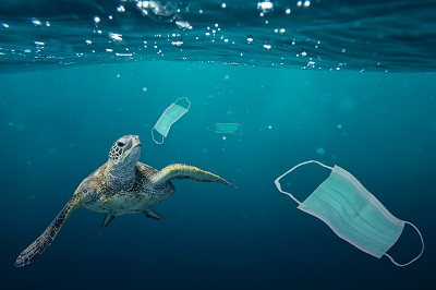 Growing plastic pollution in wake of COVID-19: how trade policy can help - Brand Spur