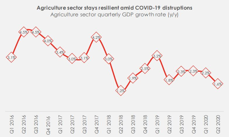 Nigeria Agriculture Sector GDP: Still resilient amid COVID-19?
