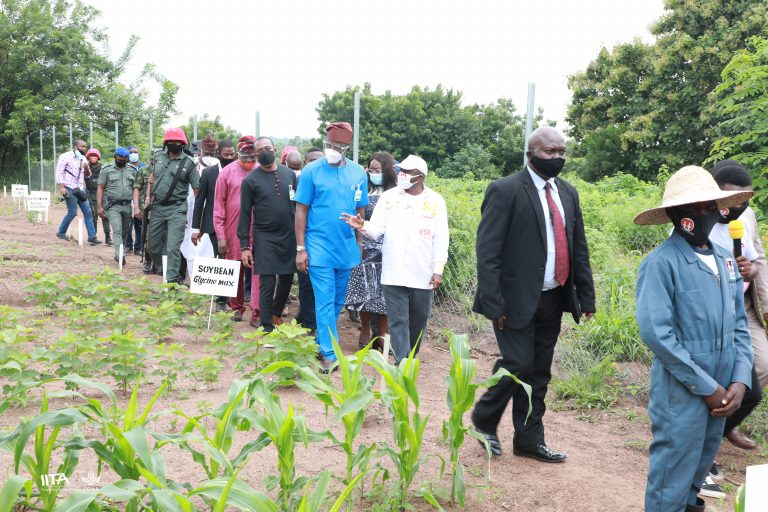 STEP initiative to reduce number of out-of-school children in Oyo State