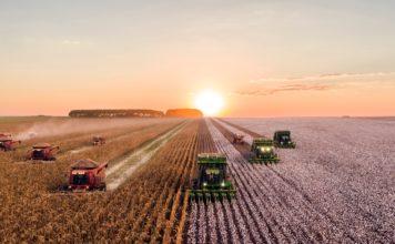 industrial farming - BRANDSPUR