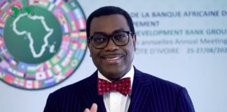 Akinwumi A Adesina , African Development Bank Group,