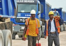 Julius Berger announces diversification into agro-processing