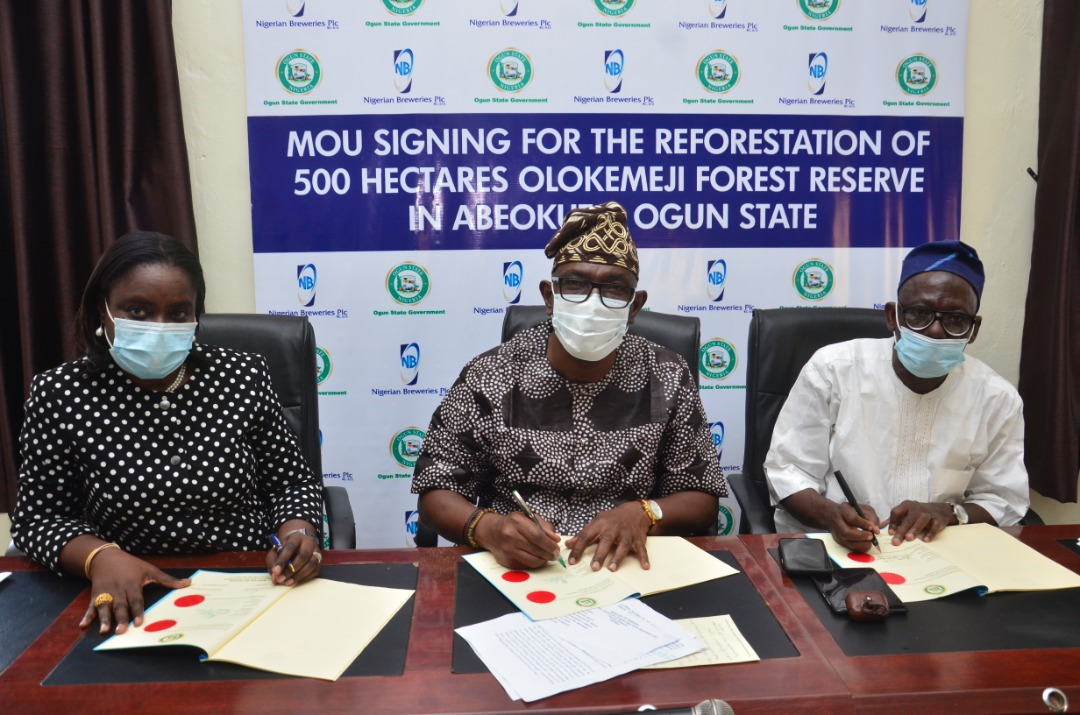 Nigerian Breweries Plc to plant 600,000 trees in Ogun State.