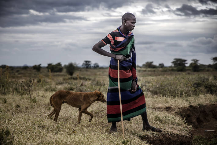 World Rabies Day 2020: FAO, OIE and WHO leaders announce collective effort to end human rabies deaths by 2030