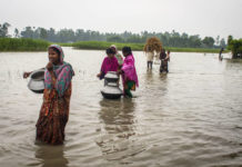 FAO, WMO and partners call for early warning and early action to avoid disasters brandspurng