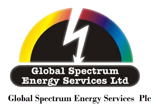 Global Spectrum Energy Services Appoints Chidolue Okonkwo as Director Brandspurng