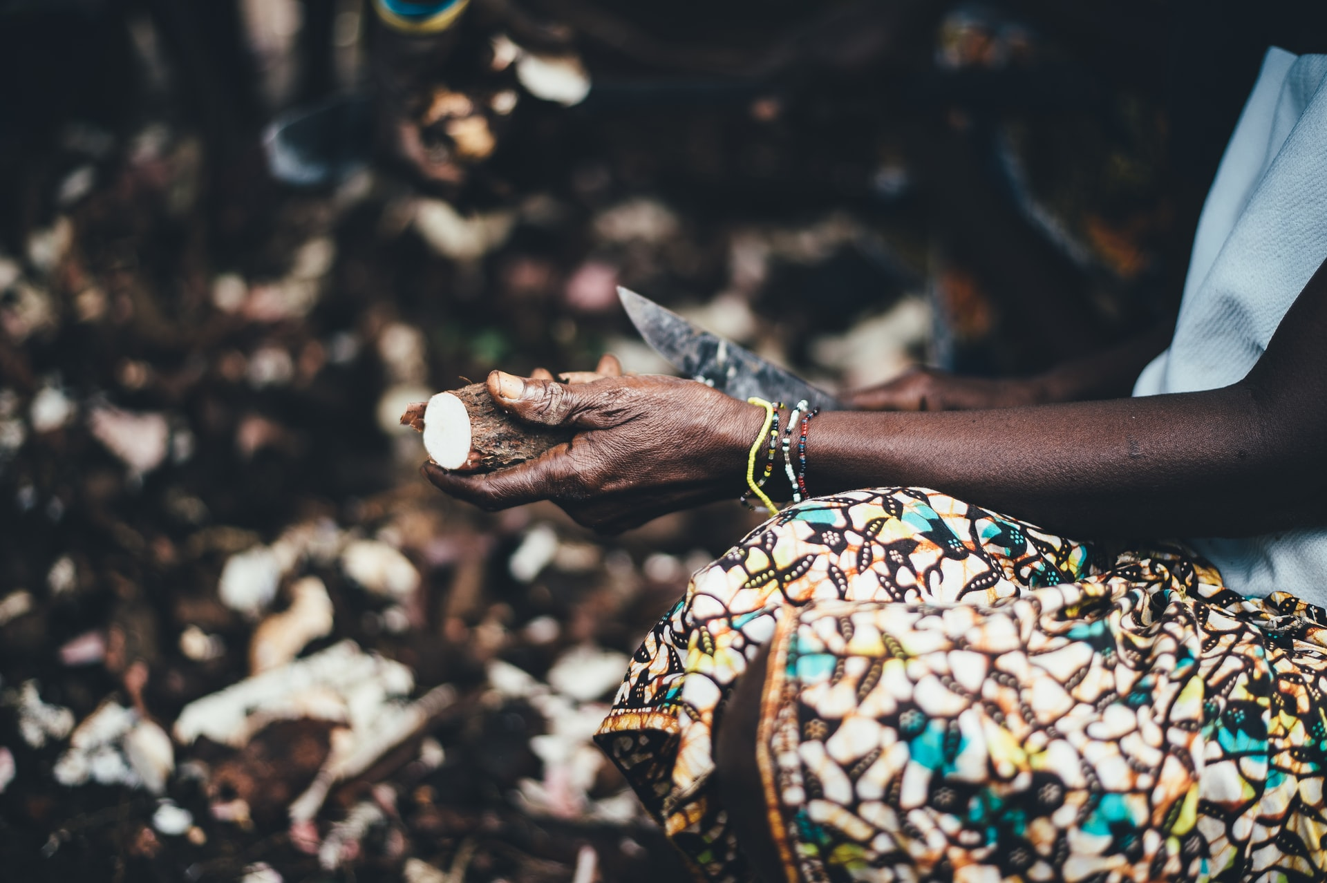 Harnessing the Economic Potential of Cassava production in Nigeria Brandspurng1
