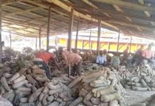 Wukari New Yam Market Declared Open