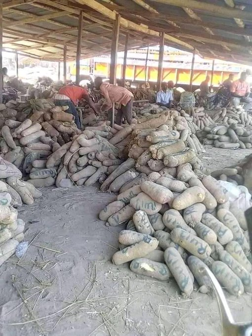 Wukari New Yam Market Declared Open