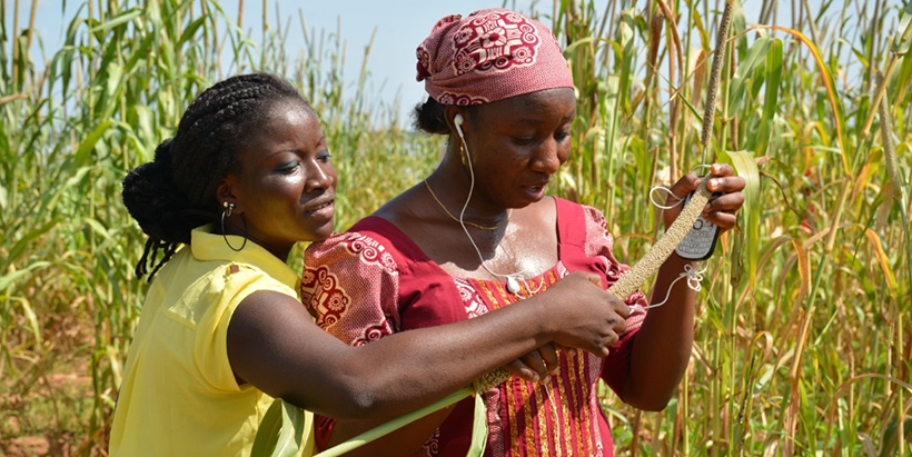 Adoption of mobile phones can provide youth with agriculture market access