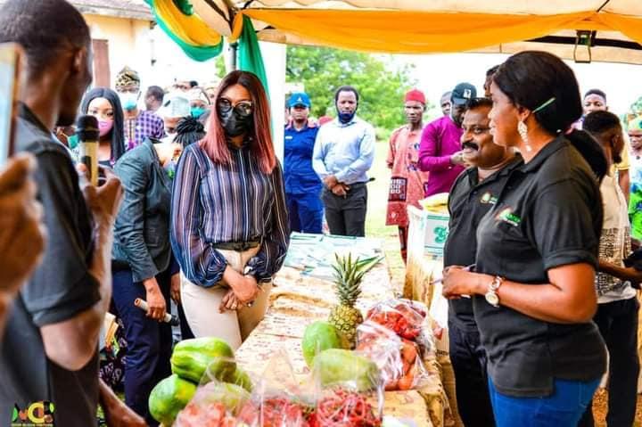 EU/GIZ/Ogun State Govt Tomato and Chili Pepper Empowerment Project (TOMAPEP) Kicks Off (Photos)