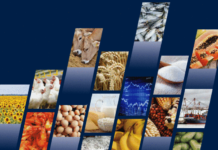 FAO's Food Outlook: Developing countries buoy global food trade