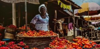 Food Prices soared in October, prices highest in Edo, Kwara, Sokoto - NBS Brandspurng