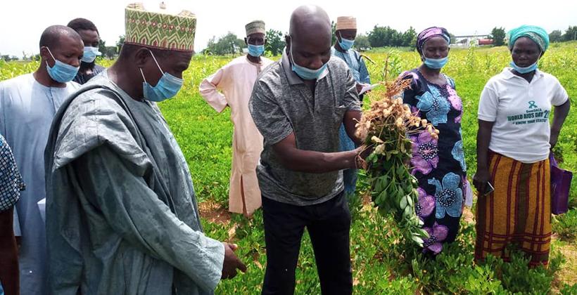 IITA conducts farmers' Green Field Day in Northeast Nigeria Brandspurng1