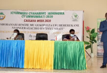 Rwandan farmers name new cassava varieties during the Cassava Week