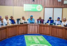Buhari should declare 2021 the National Year of the Nigerian Governors and set them the following targets Brandspurng1