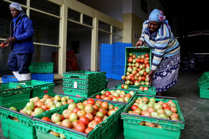 FAO launches the UN's International Year of Fruits and Vegetables 2021 Brandspurng