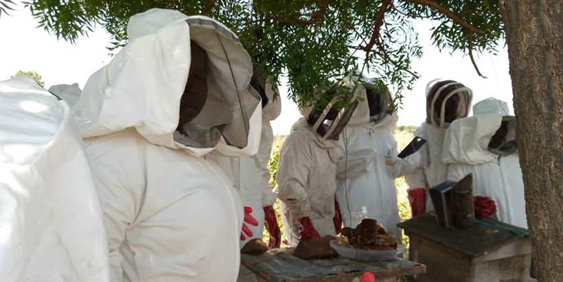 IITA Trains Northeast Women In Beekeeping And Goat Rearing brandspurng (Photos)
