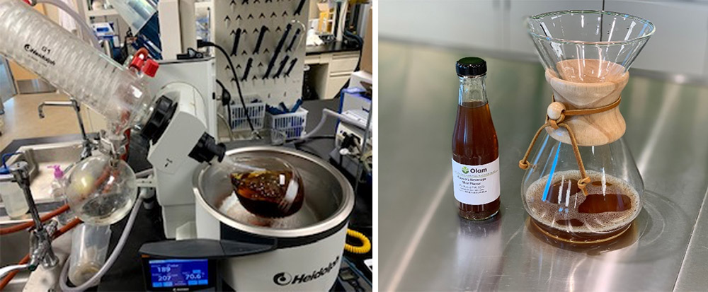 liquid-cascara-process Brandspurng Olam Coffee develops novel superfruit products from upcycled coffee cherry cascara