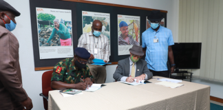 NYSC partners with IITA to create opportunities for Nigerian youth Brandspurng