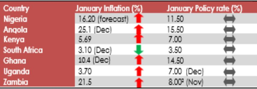 Inflation Rate Expected To Nudge Further High To 16.2% For January – Analyst Brandspurng1