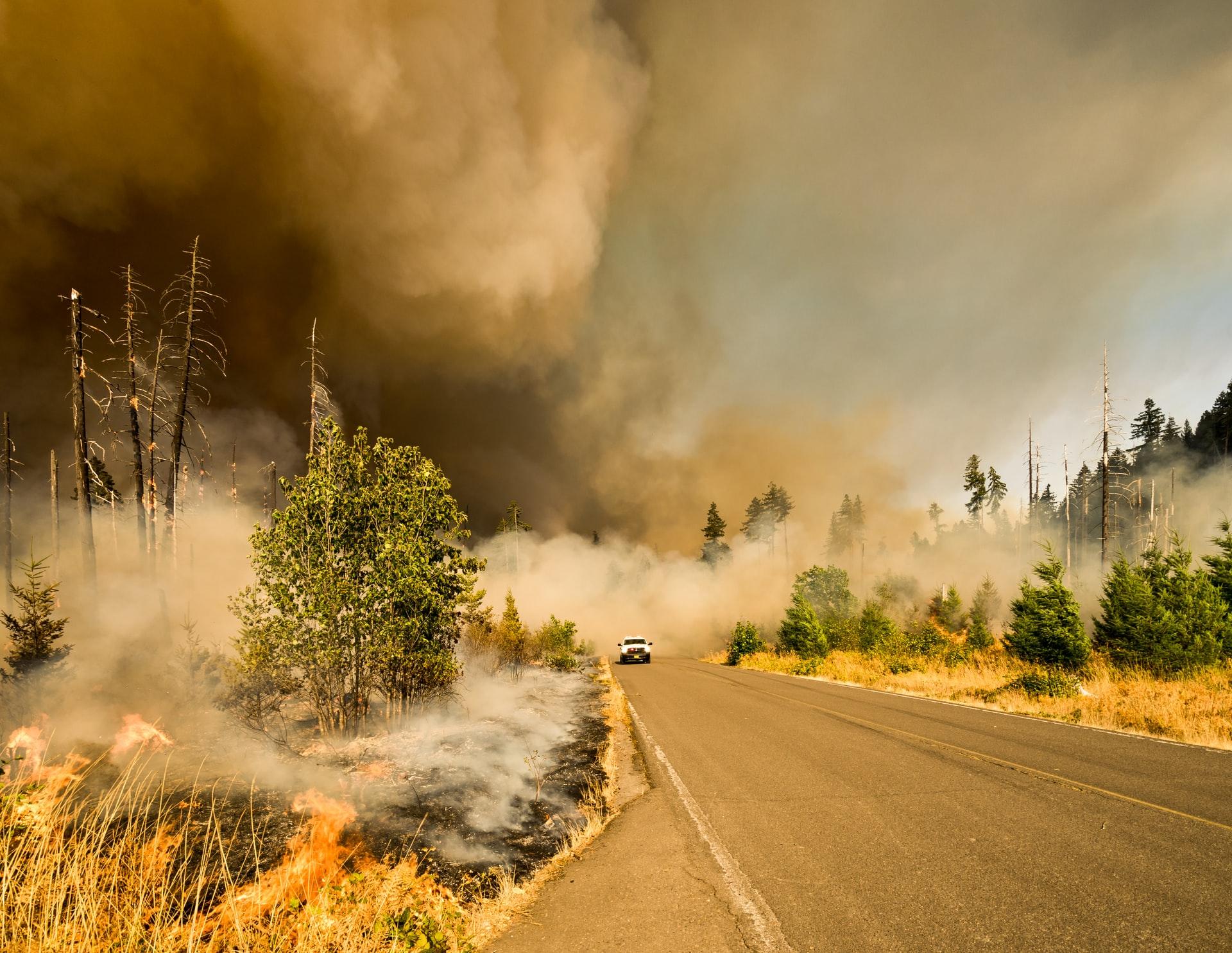 Taraba Government Warns Against Indiscriminate Bush Burning Brandspurng
