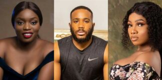 Top 10 Influential BBNaija Ex-Housemates On Instagram Brandspurng