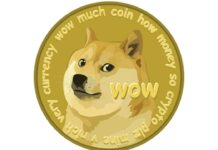 Dogecoin Markets Soar as Token Nears a Half Dollar, DOGE Price Climbs 18,299% in 12 Months brandspurng1
