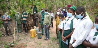IITA Partners With Nigerian Breweries For Olokemeji Reforestation-Brand Spur Nigeria