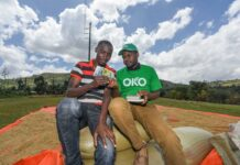 Insurtech Start-Up OKO Raises $1.2 Million To Bring Innovative Insurance To Smallholder Farmers Across Africa Brandspurng